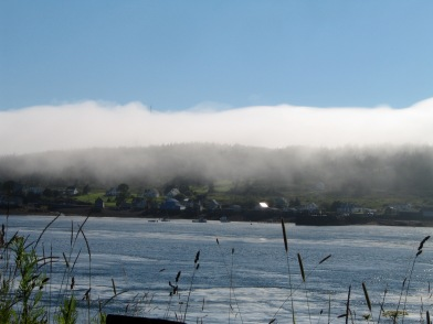 Fog over Long Island, Bay of Fundy, NS