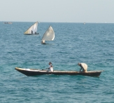 Zanzibar fishing boats