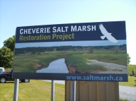Salt Marsh restoration project at Cheverie Creek, Nova Scotia.
