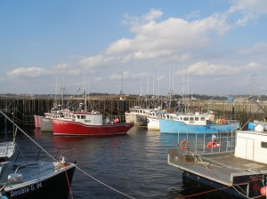 bLoster boats in SW Nova Scotia