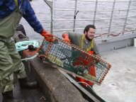Loading traps in Southwest Nova Scotia. Photo by Derek Jones.