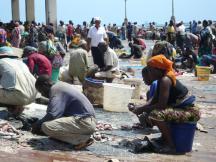 Fish market, Dar es Salaam.