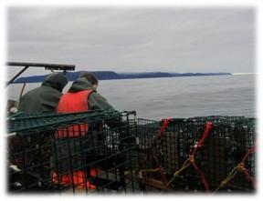 Ernie Decker and Lynn Halfyard, lobster fishing, near Baker's Brook, Newfoundland