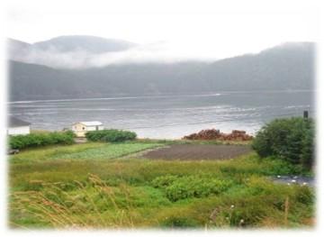 Mancel Halfyard's gardens overlooking Bonne Bay, Woody Point, Newfoundland