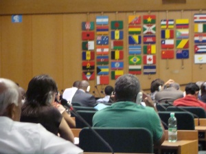 FAO meetings in Rome. Photo by Sharmane Allen.