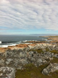 Rugged Fogo coastline