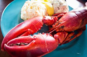 Nova Scotia Lobster Supper. By Benson Kua