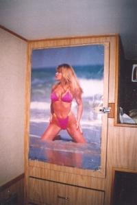My bikini-clad pal