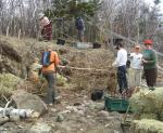 Living Shorelines Restoration in Action!